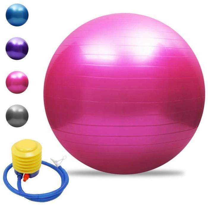 Balle de yoga Balle d'équilibre Pilates Barre de gymnastique physique Balle d'exercice physique 65 cm Rose