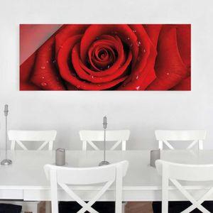 CADRE PHOTO 40x100 cm image en verre - rose rouge avec des gou