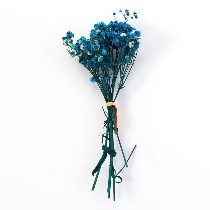 Véritable fleur heureuse petites fleurs séchées naturelles Bouquet fleurs sèches presse Mini photographie décorative Pho ES0696