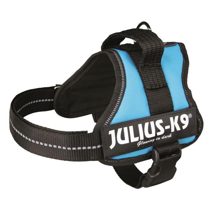 Harnais Power Julius-K9 - Mini - M : 51-67 cm-28 mm - Aigue-marine - Pour chien