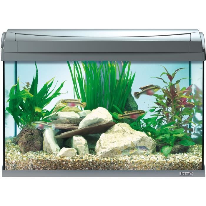 TETRA Aquarium AquaArt 60 L - Anthracite - Pour poisson