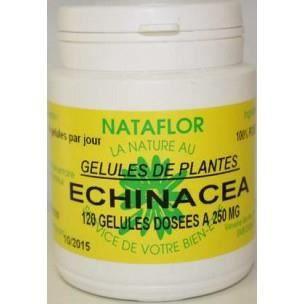 DÉFENSE IMMUNITAIRE  GELULES ECHINACEA racine 250 mg. - Complément A...