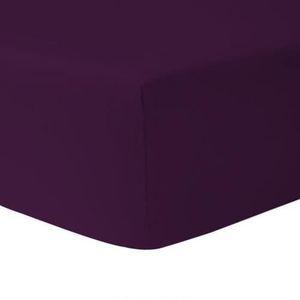 DRAP HOUSSE Drap Housse 160 x 200 - PRUNE 100% coton 57 fils /