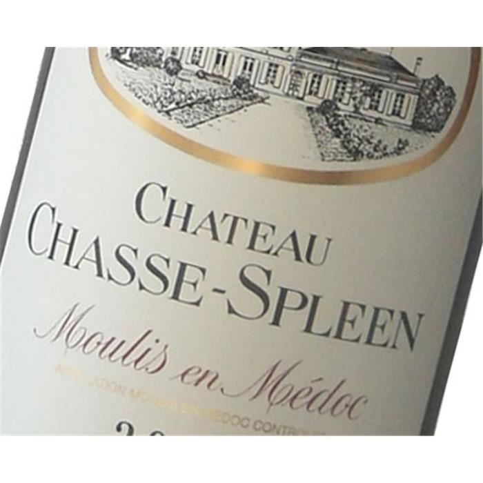 Château Chasse Spleen - Moulis 2016 6 x Bouteille (75 cl)