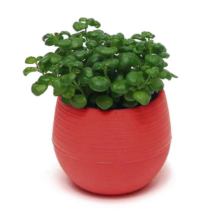Plantes succulentes mignonnes pot de fleur soucoupe plateau planteur Home Desk Garden Decor rouge