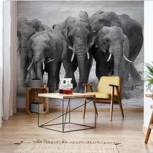 AFFICHE - POSTER Poster Mural Divers  Animaux et vieVEL - 152.5cm x