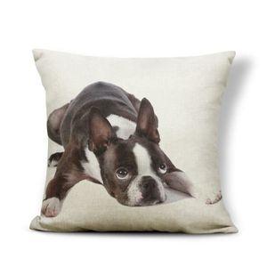 Pet housses de coussin animal oreiller couverture aquarelle Décorations Les taies d/'oreiller