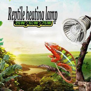 CHAUFFAGE Animal Lampe Ampoule Chauffante Reptile Tortue Pèl