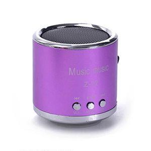 ENCEINTE NOMADE Lecteur de musique de haut-parleur avec micro bass