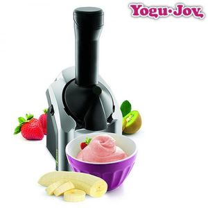 SORBETIÈRE MACHINE A GLACE & SORBETS SPECIAL FRUITS vu tv!