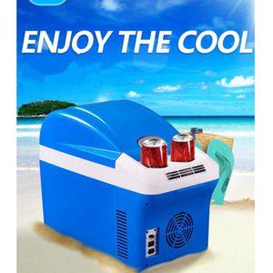 RÉFRIGÉRATEUR CLASSIQUE voiture réfrigérateur 15L 12 V 24 V 220 V glacière