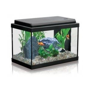 achat aquarium aquatlantis. Black Bedroom Furniture Sets. Home Design Ideas