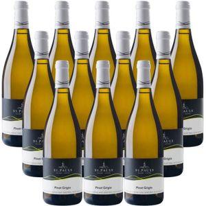 VIN BLANC Alto Adige Pinot Grigio DOC vin blanc italien 12 b