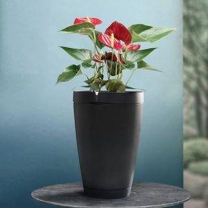 JARDINIÈRE - BAC A FLEUR Pot de fleur connecté Parrot Pot noir ardoise