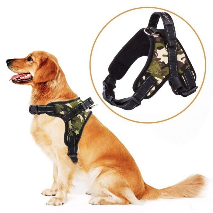 vanker portable design Boucle r/éfl/échissant 3/m sans tirer Pet Gilet Harnais souple pour chien avec poign/ée rembourr/ée Taille L Orange XL