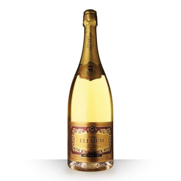 Magnum Trouillard Elexium Brut Brillant - 150cl - Champagne