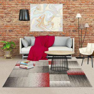 TAPIS Tapis pour salon DERBY 200 x 290 cm Gris
