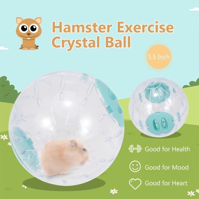Balle d'exercice Hamster Balle de cristal pour hamster Balle de course pour hamster transparente de 5,5 pouces