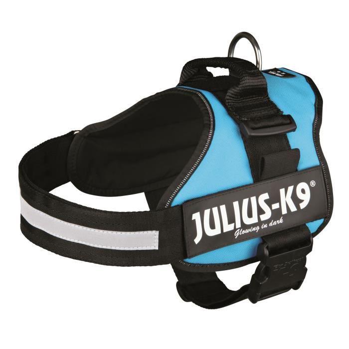 Harnais Power Julius-K9 - 1 - L : 66-85 cm-50 mm - Aigue-marine - Pour chien