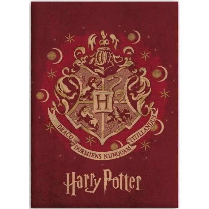 kidparadise - Harry. Potter - Couverture plaid polaire Harry Potter 100 x 140 cm