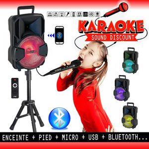 PACK SONO Enceinte Karaoké Mobile Party USB SD BLUETOOTH + P