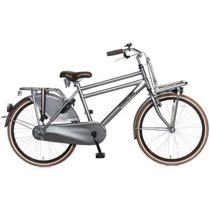 Vélo Fille Garçon Popal Daily Dutch Basic 24 Pouces Rétropédalage Arriére et LED Phares Padlock Porte-baggage Gris 95% Assemblé