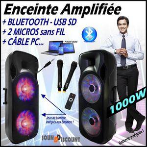 PACK SONO Enceinte 1000W Mobile + LEDs + 2 Micros sans fil +