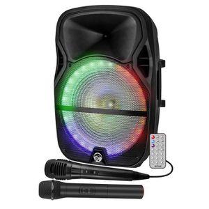 PACK SONO Enceinte Mobile 700W Sono Active KARAOKE DJ 12