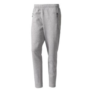 SURVÊTEMENT Adidas Performance Pantalon Stadium Adidas gris, v