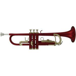 TROMPETTE Trompette d'Études Sib TR-101R
