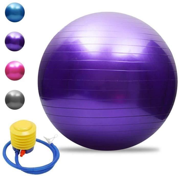 Balle de yoga Balle d'équilibre Pilates Barre de gymnastique physique Balle d'exercice physique 65 cm Violet