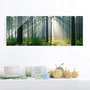 CADRE PHOTO 40x100 cm verre image - enlightened forêt - panora
