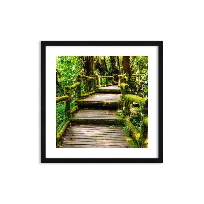 Image Impression sur toile 60x60 cm Chemin bois forêt - Le Cadre couleur noire - pour la mur - F1BAC60x60-2417