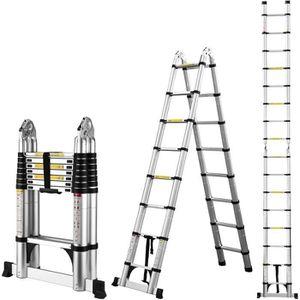 ECHELLE Échelle Télescopique Pliante 5M (2.5M + 2.5M) - Éc