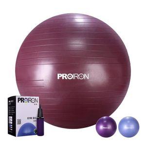 HROYL Balles dexercices avec Pompe Fitness Ballon Suisse Yoga Pilates Et Lentra/înement Exercice /à la Maison et en Classe