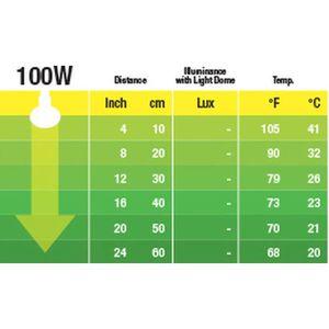 ÉCLAIRAGE EXO TERRA Ampoule nocturne - 100 W - Pour reptile