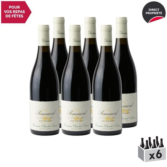 Pommard Les Vignots Rouge 2017 - Lot de 6x75cl - Domaine Chantal Lescure - Vin AOC Rouge de Bourgogne - Cépage Pinot Noir