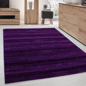 Tapis violet 200x290