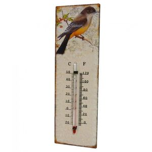 Thermometre decoratif achat vente thermometre for Thermometre exterieur original