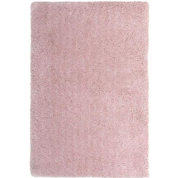 tapis nuage extra doux 170x120cm rose 170x120 achat vente tapis cdiscount. Black Bedroom Furniture Sets. Home Design Ideas