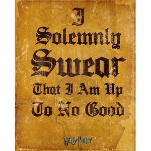 AFFICHE - POSTER Harry Potter - I Solomnly Swear - 40x50cm - AFFICH