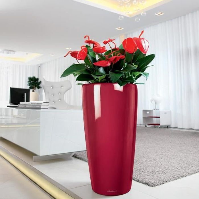 Lechuza rondo 40 rouge brillant kit complet achat for Grand interieur rouge