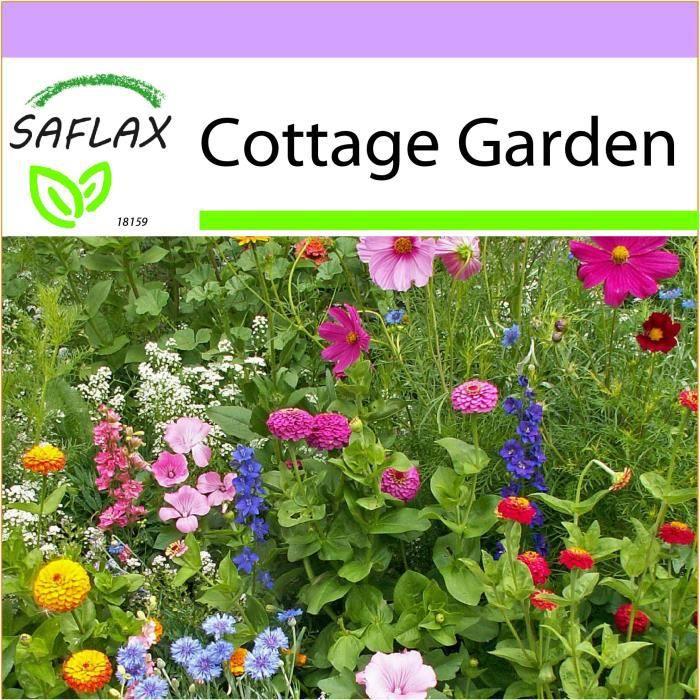 SAFLAX - Cottage Garden - 1000 graines - 21 Variétés