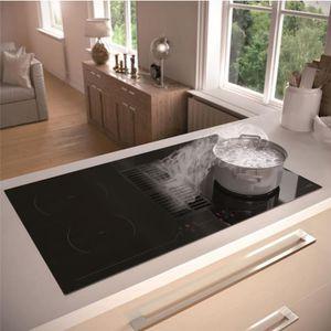 PLAQUE INDUCTION Plaque de cuisson avec hotte intégrée Airforce ASP