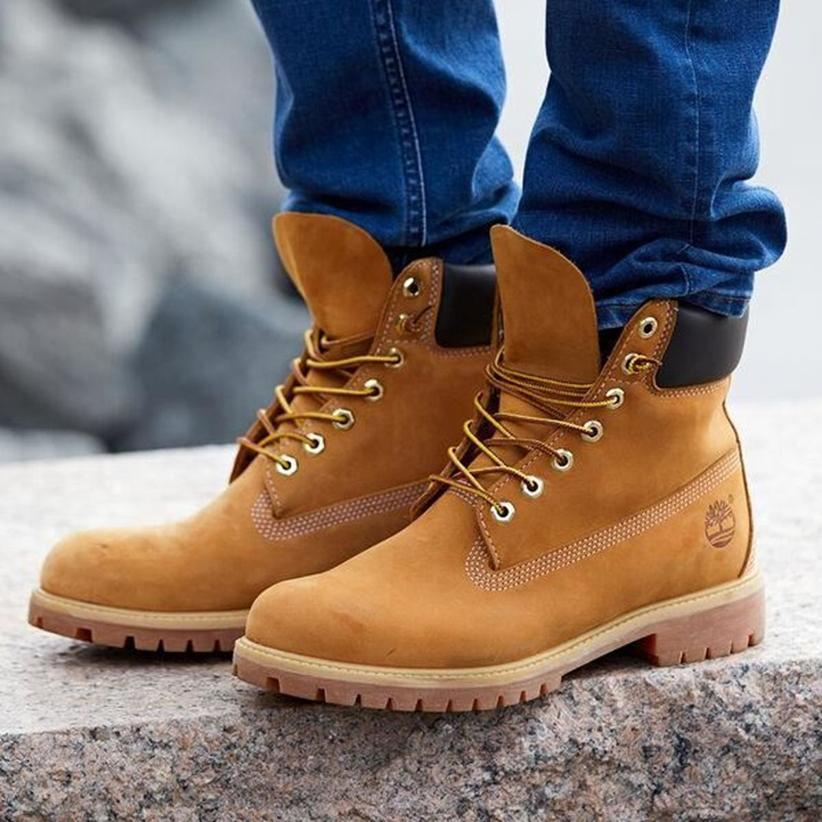timberland classic homme