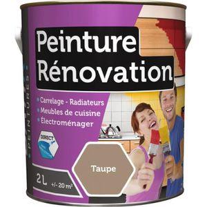 PEINTURE - VERNIS Peinture rénovation multi-surfaces boîte 2 l taupe