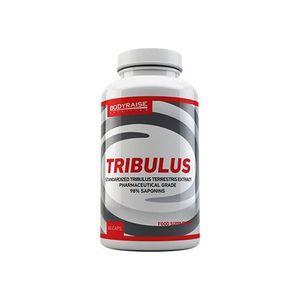 STIMULANT HORMONAUX Stimulant hormonaux Bodyraise Tribulus (60 capsule