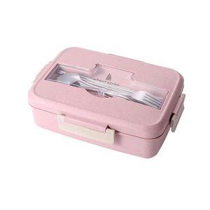 LUNCH BOX - BENTO  Lunch Box Boîte Déjeuner Boîtes Alimentaire Boîtes