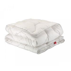 COUETTE Couette Epeda Aloe Hiver 260x240