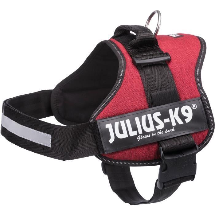 JULIUS K9 Harnais Power 3–XL-XXL : 82–116 cm - 50 mm - Rouge bordeaux - Pour chien
